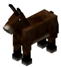 200px-Mule