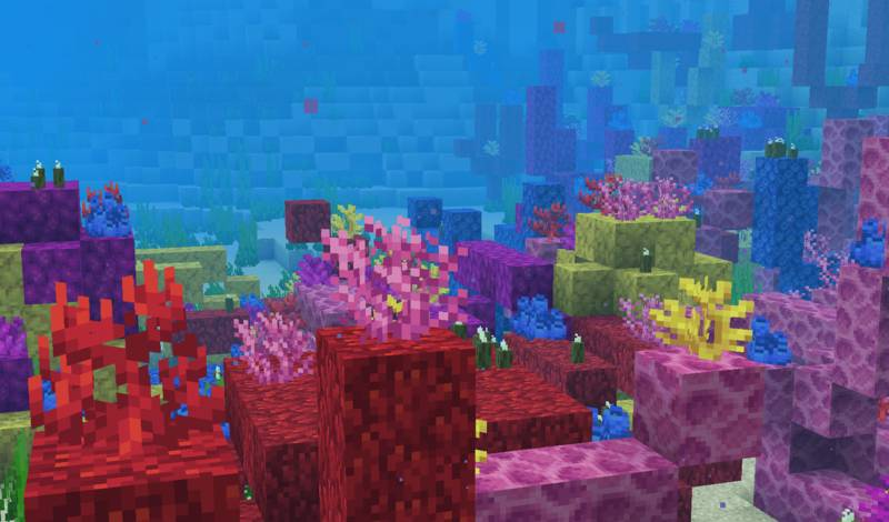 800px-Coral_Reef_18w14b